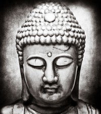 buddhism and reincarnation